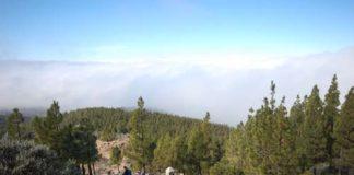 Pico de las Nievesiltä vaeltamisen voi aloittaa laskeutumalla, sillä ollaanhan Gran Canaria -saaren korkeimmalla kohdalla.