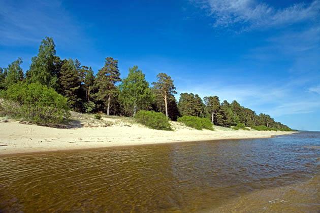 Peipsin vaaleahiekkainen hiekkaranta Viron pohjoisrannikolla. Kuva Jaak Nilson