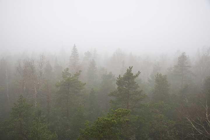 Lauhavuoren kansallispuisto ja UNESCOn Geopark